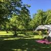 Tent midden in de hoogstamboomgaard.