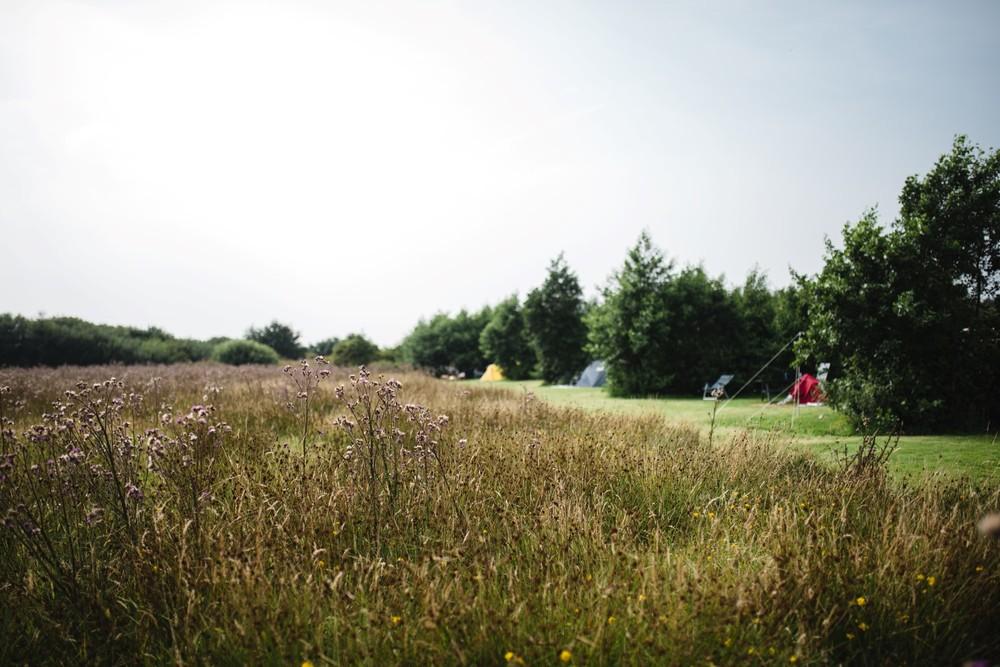Het terrein, open en groen.