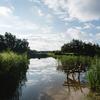 De omgeving: het prachtige Flevoland.