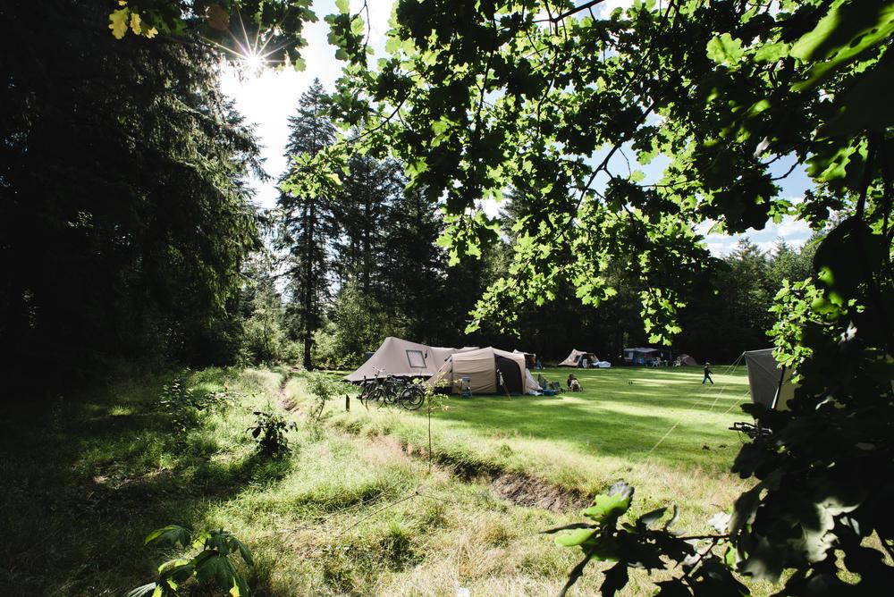 Doorkijkje naar het tentenveld.