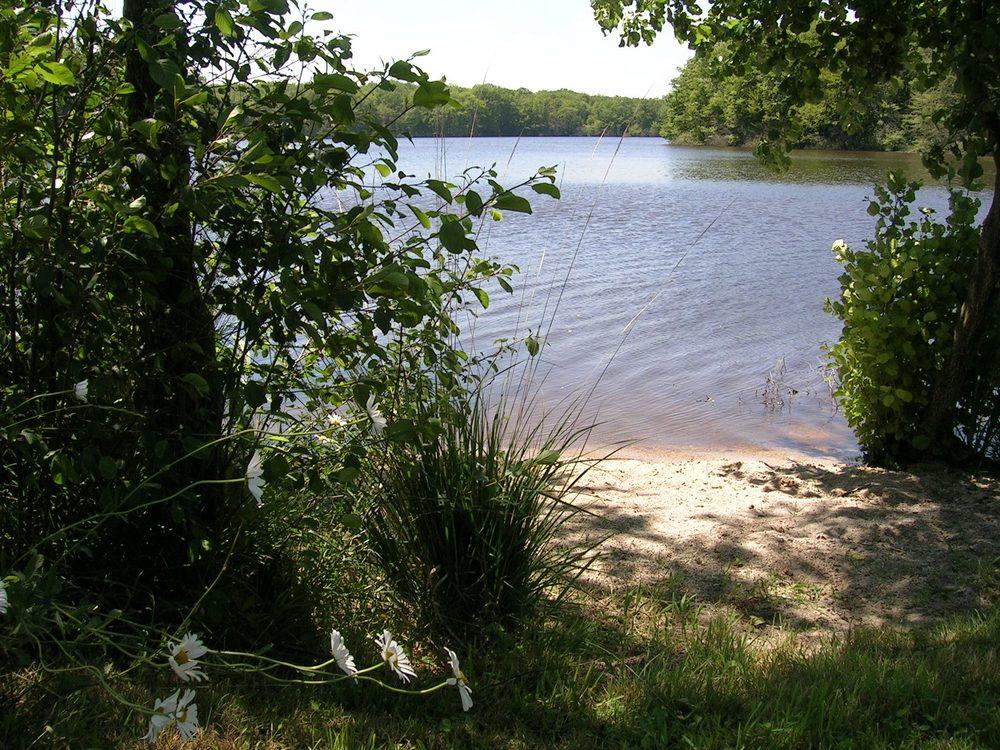Puur natuur! Echt midden in de natuur, aan een heerlijk zwemmeer.
