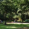 Kamperen op het veld in het bos.