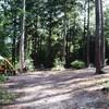 Kamperen op ruime plaatsen in het bos.