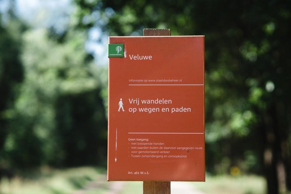 Wandelen op de Veluwe.