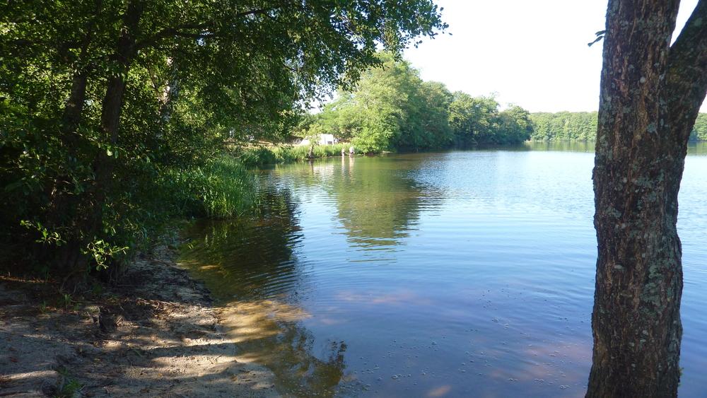 Het meer blijft trekken.
