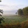 Mist boven de velden