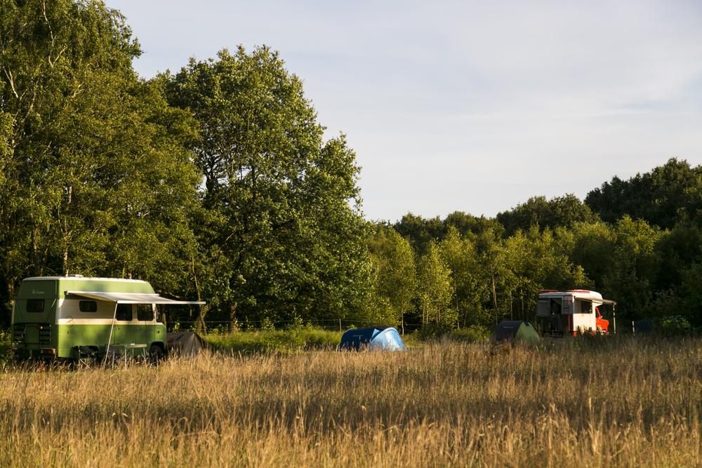 kampeerbusjes en tenten op het terrein