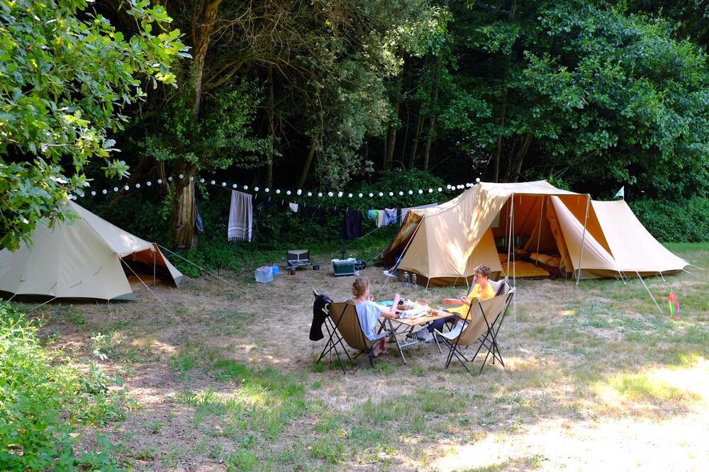 tenten aan de rand van het bos