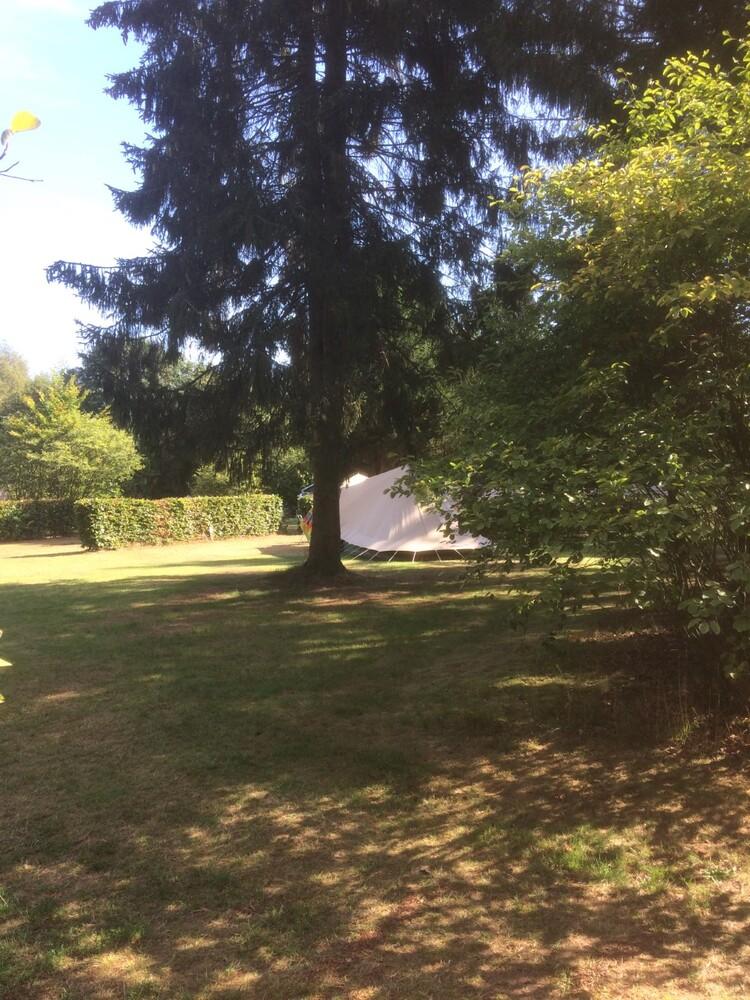 Tent tussen de bomen