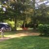 Hangmat tussen twee grote bomen
