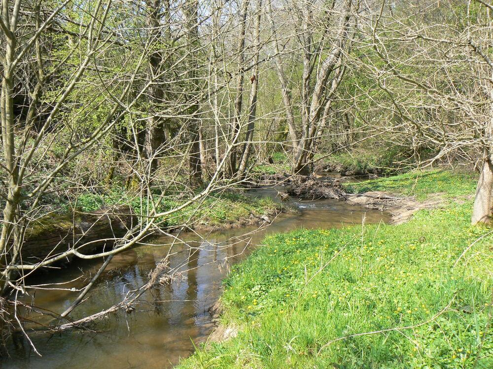 Ruisseau en bas