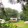 Kampeerbusjes en kleinere campers op het gras tussen de tenten.