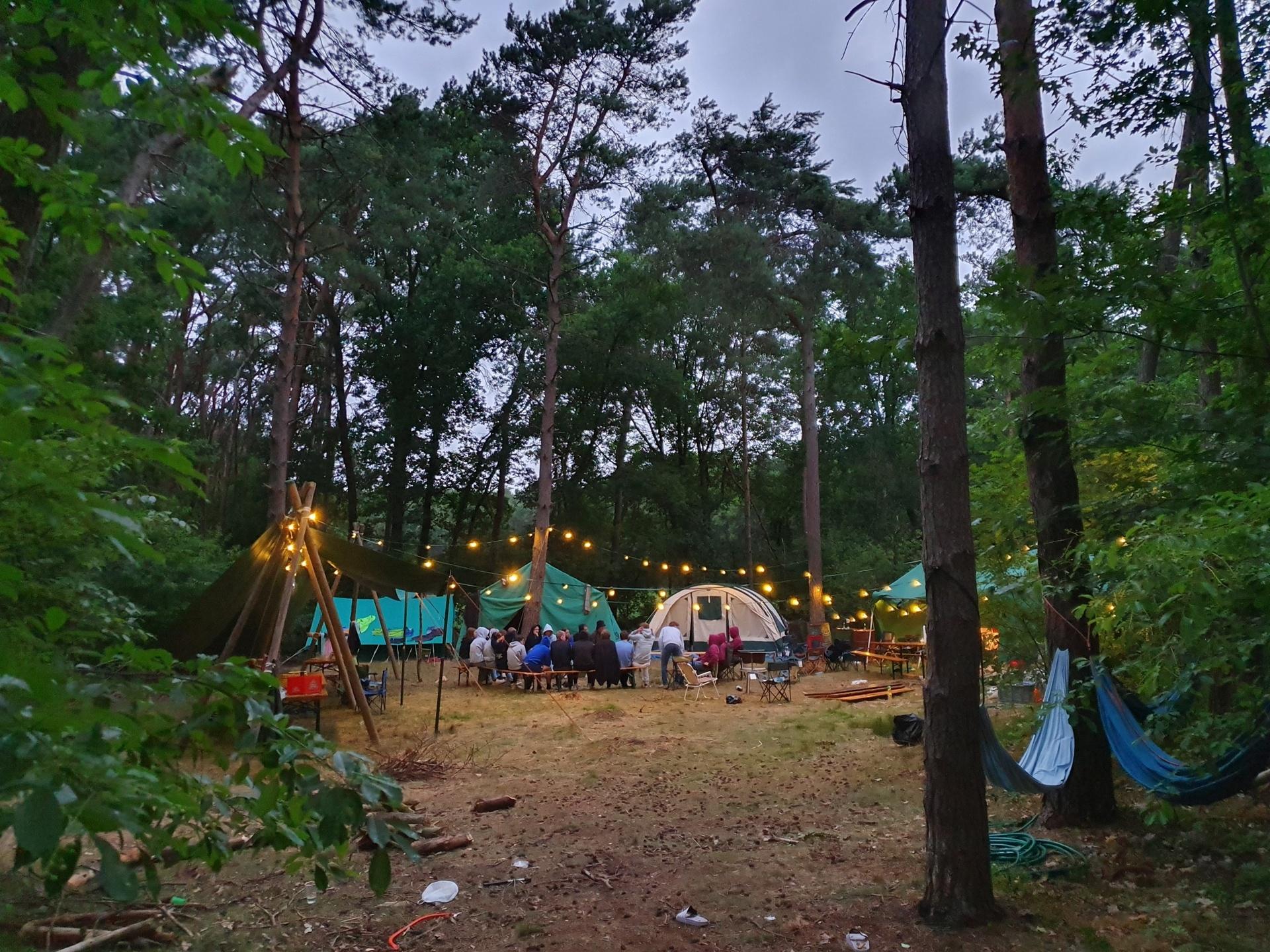 Midden het bos, prachtige avond